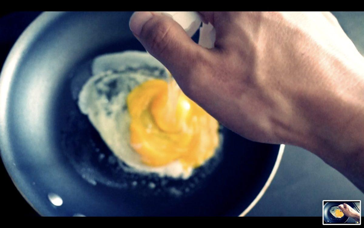 egg hand