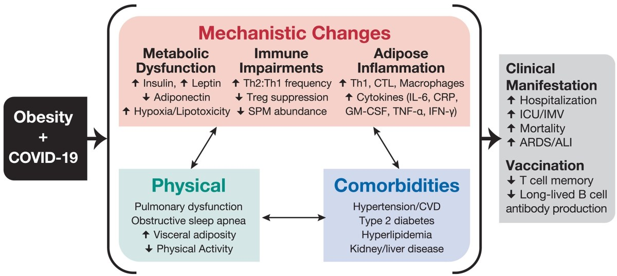 Obesity and covid 19