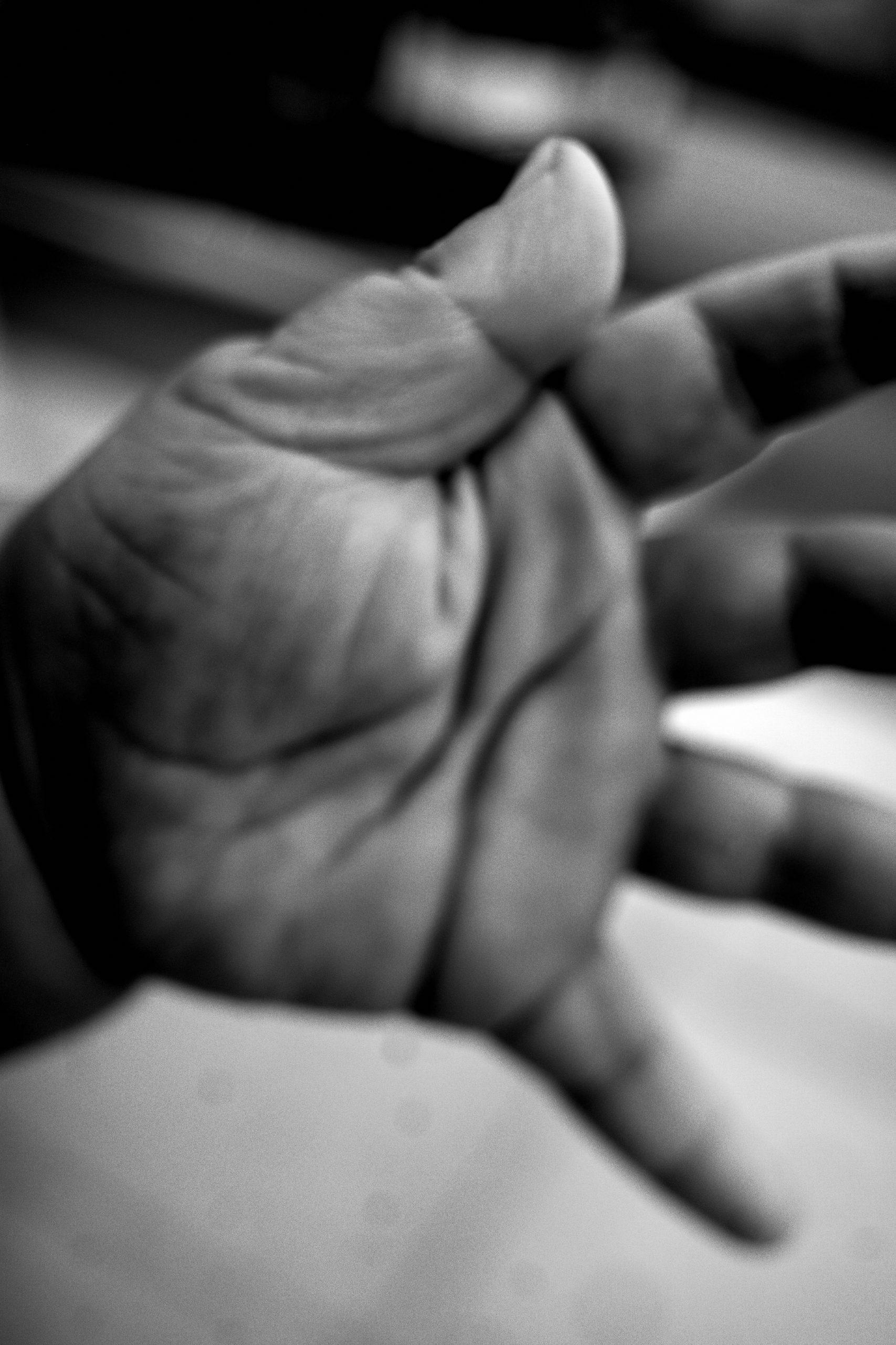 seneca hand