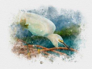 Snowy Egret watercolor bird art print gift for bird lovers