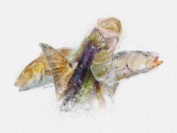 Inshore slam watercolor art print gift for florida fisherman