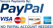 PayPal payments image
