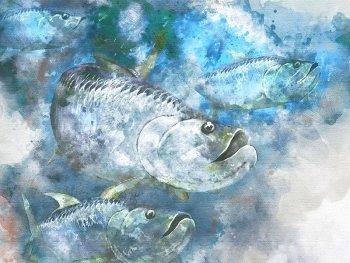 Tarpon fisherman gift art school watercolor print