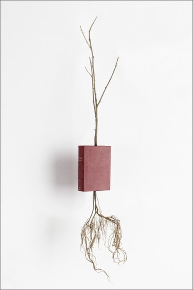© Eric Le Maire, Expériences botaniques, livre