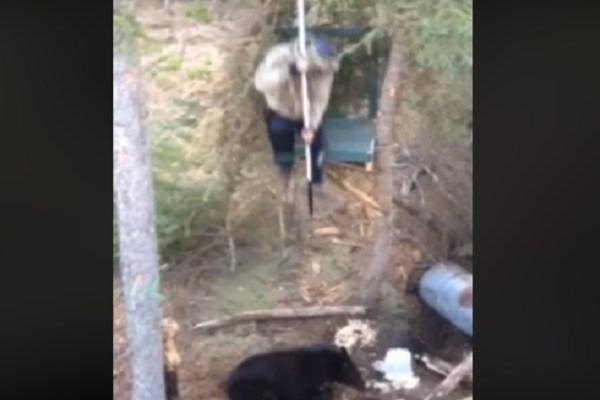 bear spear hunt