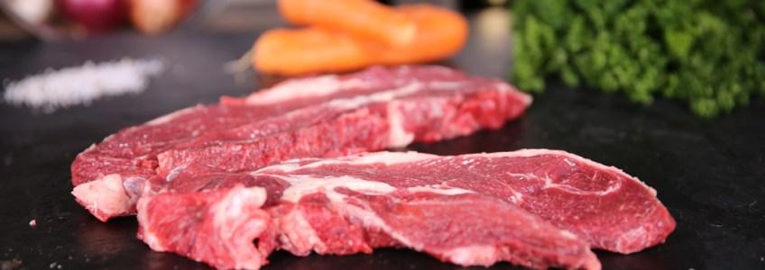 La vache charolaise, une race bovine mondialement connue pour sa viande moelleuse, tendre et riche en vitalité