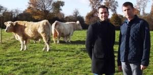 Des producteurs gèrent leur site de viande en ligne