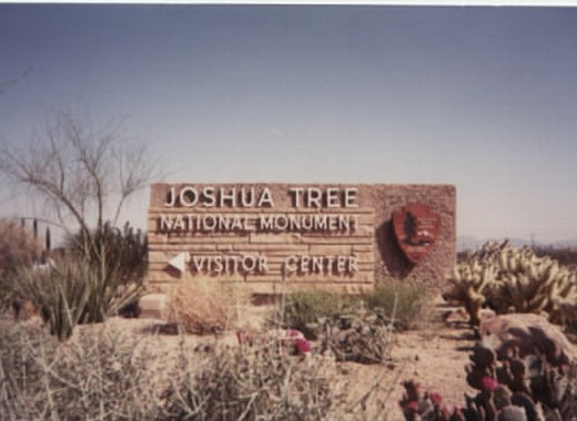 Joshua Tree, USA (1990)