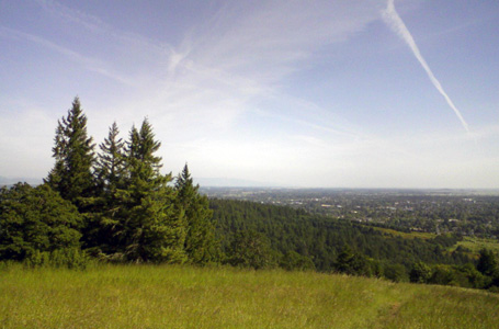 Eric Stoller hiking in Corvallis Oregon Dimple Hill Dans Trail MacDonald Forest