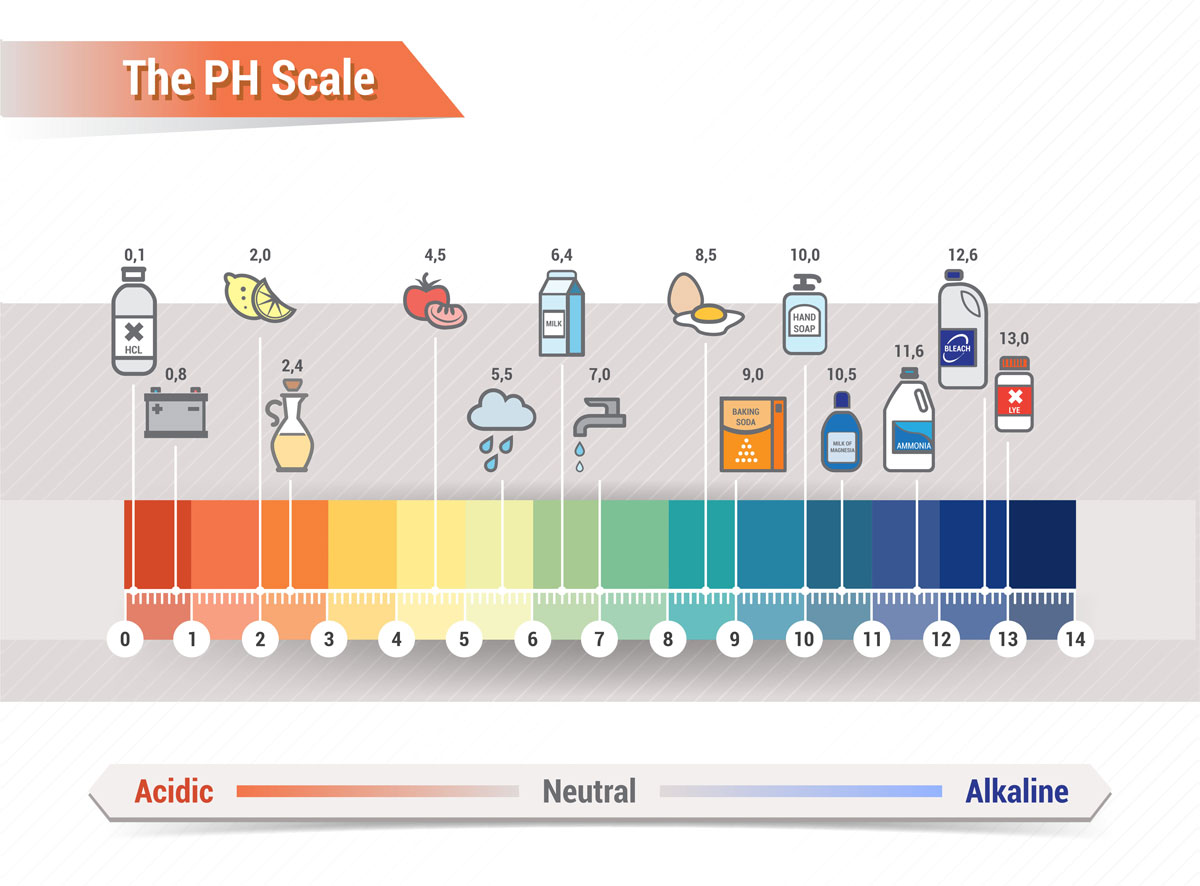 hight resolution of dental ph scale