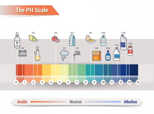 small resolution of dental ph scale