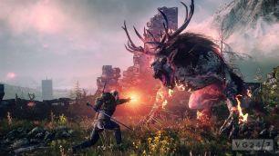 the_witcher_3_wild_hunt_2