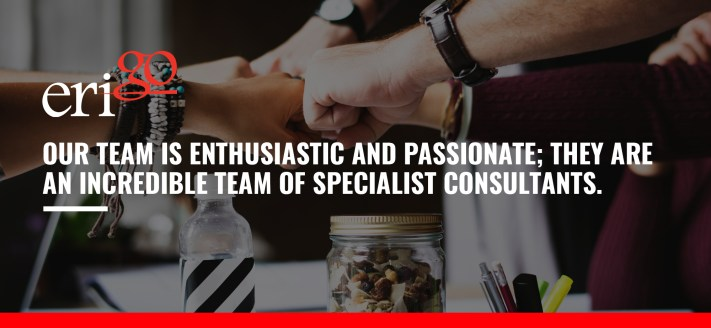 team of specialist consultants