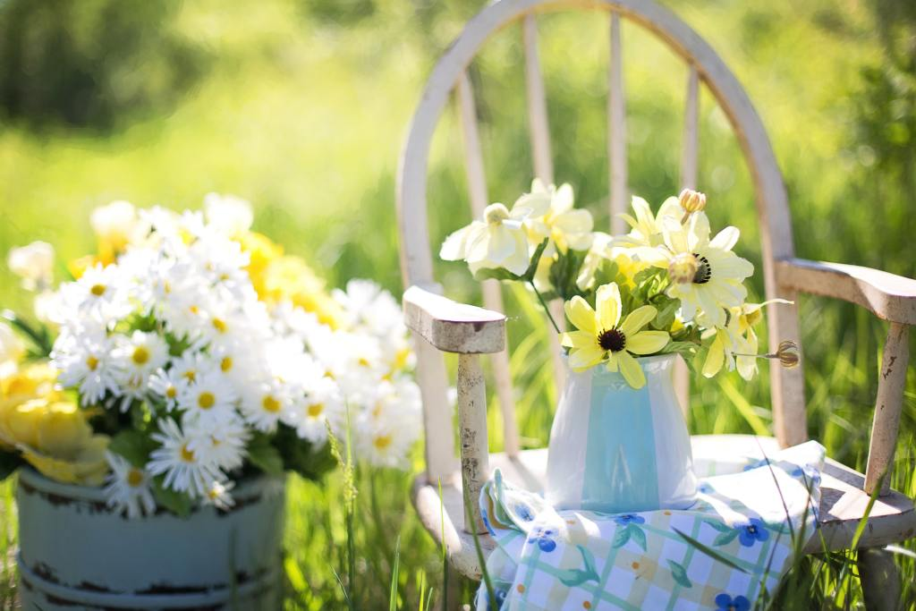 gardens that share in aged care