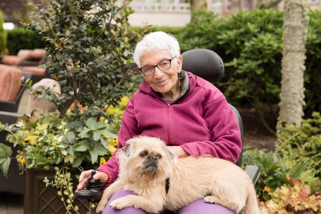 pet therapy dementia