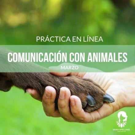 Práctica Comunicación con Animales_Marzo