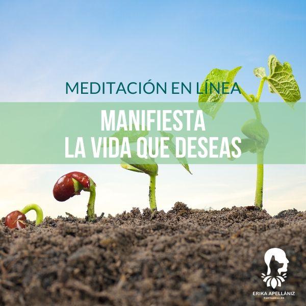 Meditación guiada en línea manifiesta la vida que deseas junio