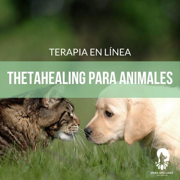 Terapia en línea - Thetahealing para animales