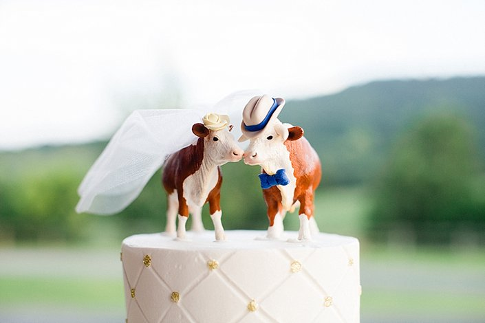 Mattie and Luke | Classy Country Wedding | Arkansas Wedding Photographer_0064