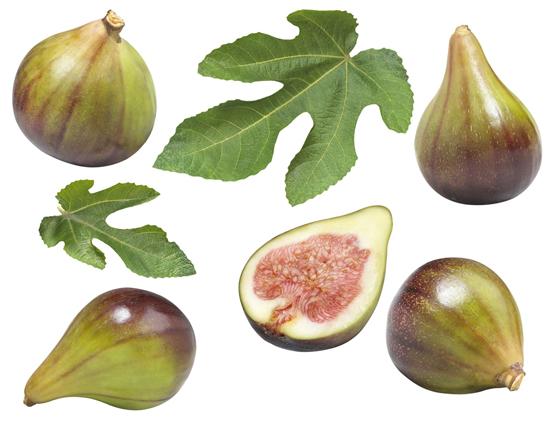figs-dannon