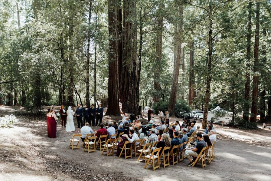 California Redwoods wedding
