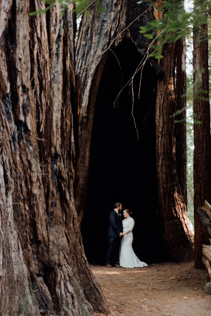 Wedding photos in the California Redwoods