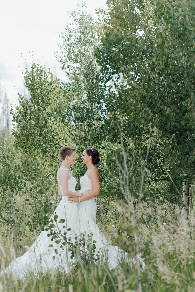 Summer wedding in Clark, Colorado