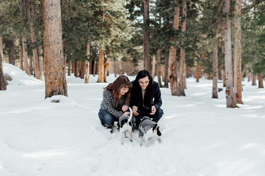 Including your dogs in your engagement photos