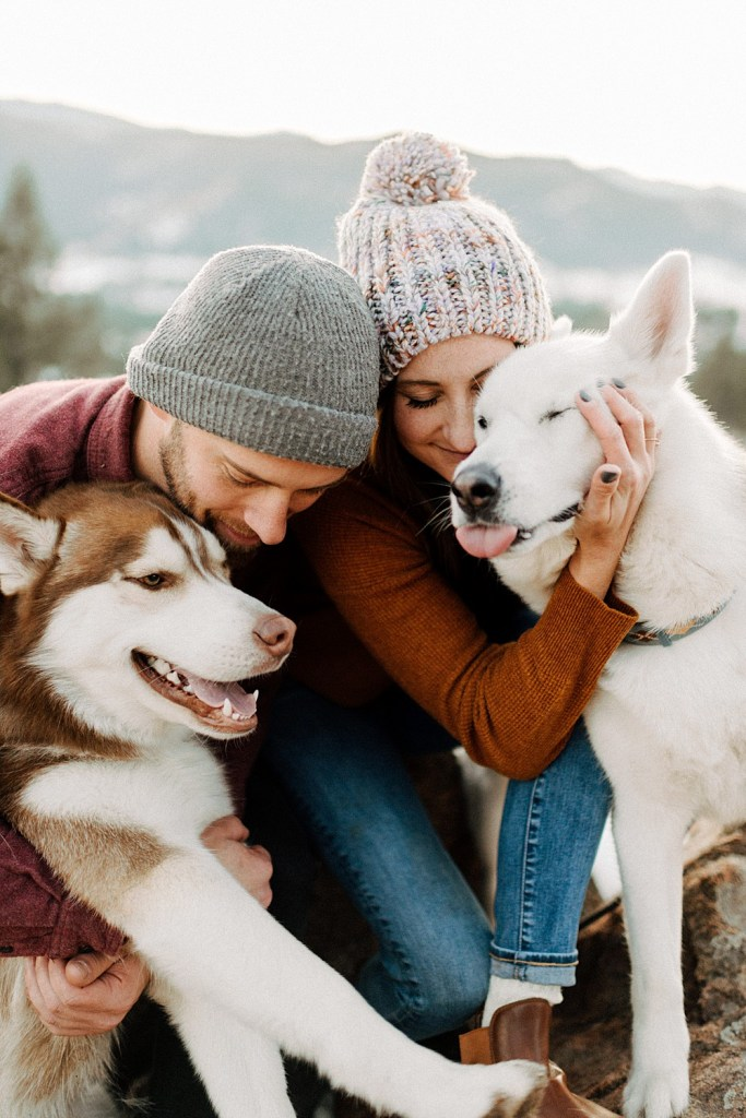 photo shoot with dogs