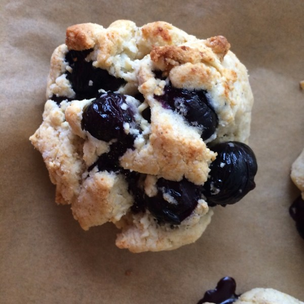 Gluten-free Blueberry Scone