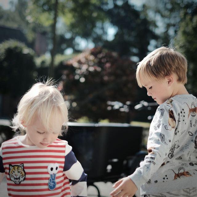 Finn en Rowen Confetti - 8