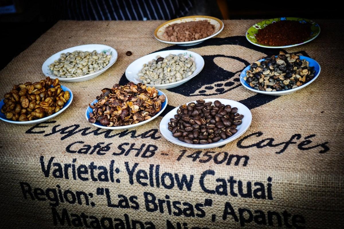 Santa Emilia, Nicaragua: The City Coffee Built