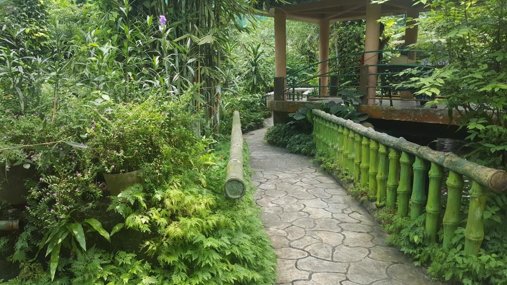 Kuala Lumper - Perdana Botanical Garden PIC: AS