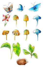 """Plants and animals illustration by Erina Dempsey for children's book website """"The Little Snail"""""""