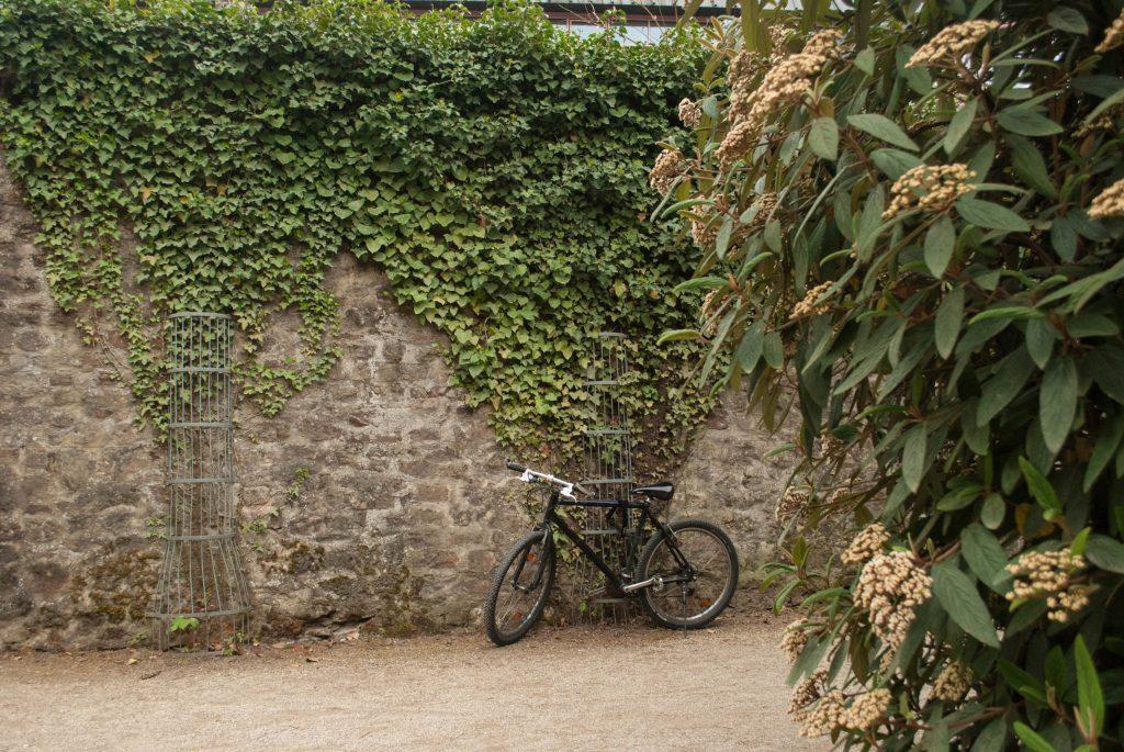Trier Konstantinbasilika Palasgarten3