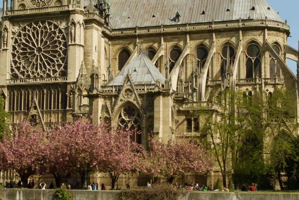 paris with kids - notre dame