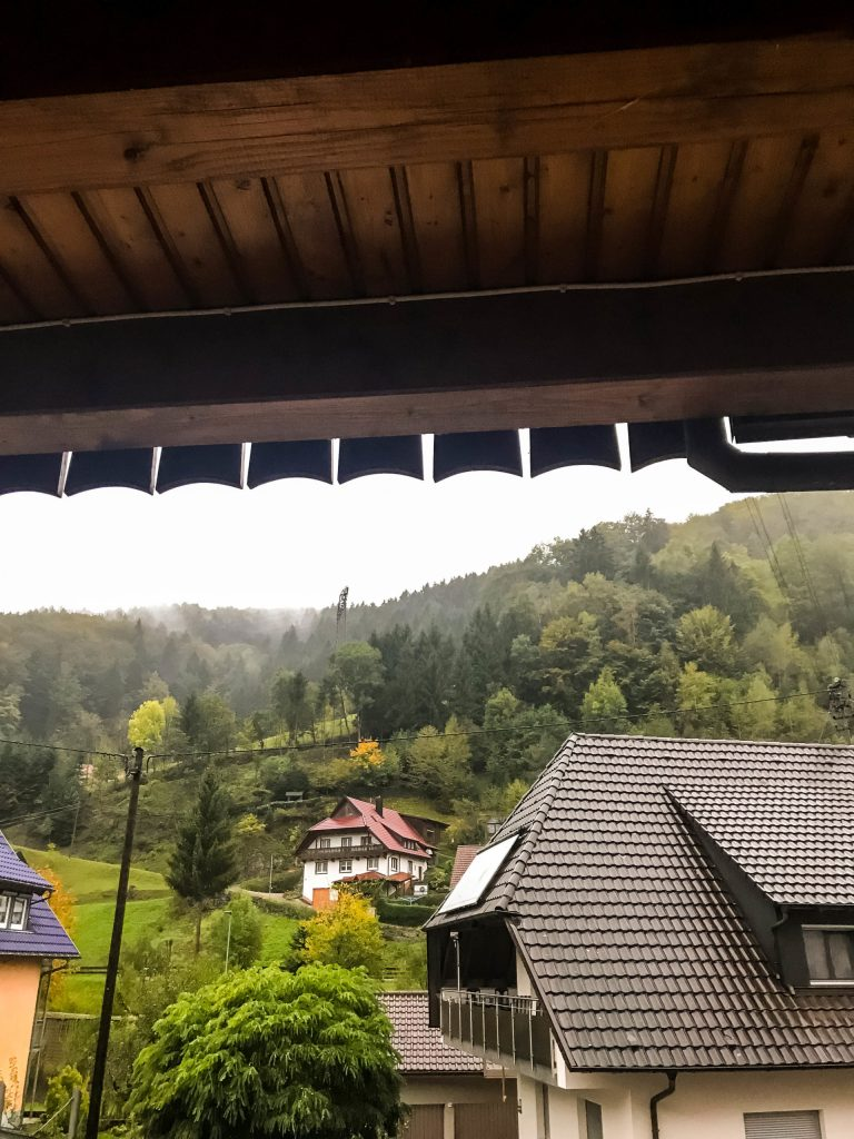 Black Forest hotel view
