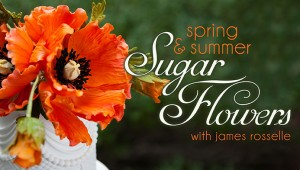 James Rosselle Sugar Flower Craftsy Class Discount Link | ErinBakes.com
