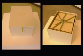 "Pandora (maybe), book-box, intaglio prints, letterpress text, custom plinth. book: 7.5"" x 6"" x 5"", plinth: 36"" x 13"" x 13"", 2011."