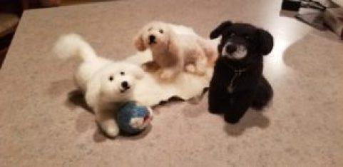 dog trio