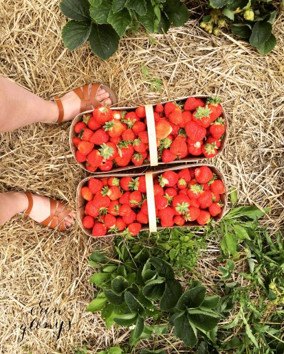 Strawberry picking (and eating!) in June. Jam making all month.