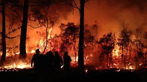 Bushfires Blue Mts