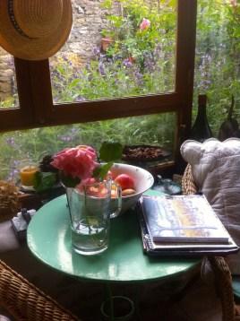 Sage flowering otside the window