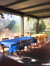 Studio in the Outback Bar