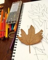 Autumn leaves sketch