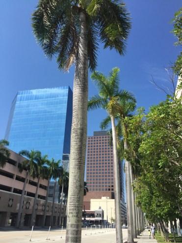 Walking down Las Olas Boulevard