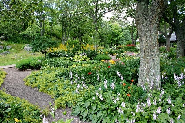 garden-56719_640