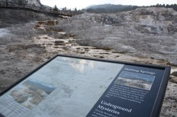 The Minerva Terrace of the Mammoth Hot Springs