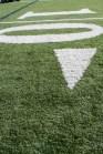 Cornell 10-yard line