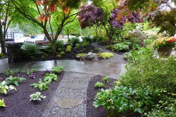 capitol hill garden design- complete